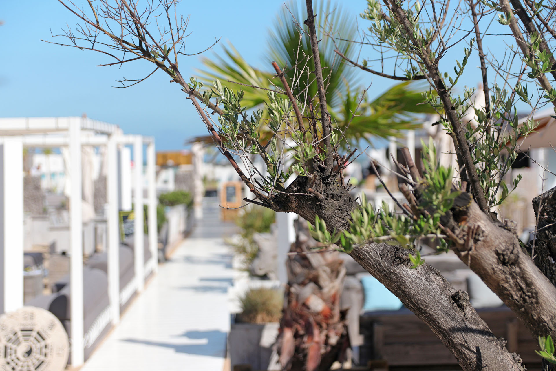 Yssi's Beach Bar Knokke